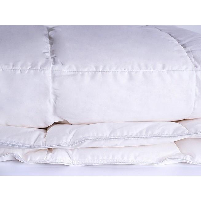 Купить одеяло пуховое Воздушный вальс евро 200х220 ВВ-О-7-3