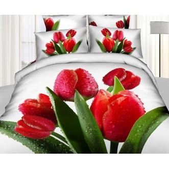 Постельное белье сатин TS01-835 1/5 спальное Tango