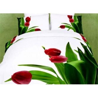 Постельное белье сатин TS02-FS793 2 спальное Tango