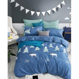 Купить постельное белье твил TPIG4-432 1/5 спальное Tango