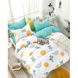 Купить постельное белье твил TPIG4-674 1/5 спальное Tango
