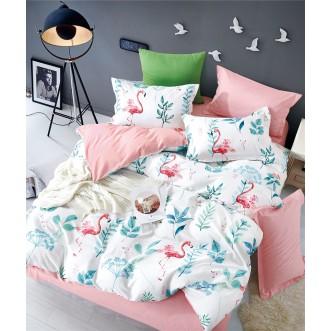 Купить постельное белье твил TPIG2-781 2 спальное Tango
