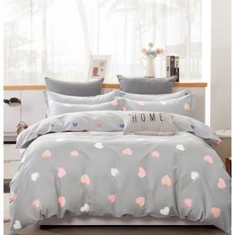 Купить постельное белье твил TPIG2-901 2 спальное Tango