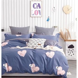Купить постельное белье твил TPIG2-907 2 спальное Tango