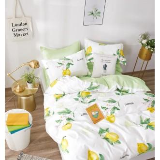 Купить постельное белье твил TPIG2-1024 2 спальное Tango