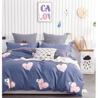 Купить постельное белье твил TPIG4-907 1/5 спальное Tango