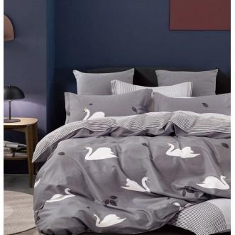 Купить постельное белье твил TPIG6-916 евро Tango