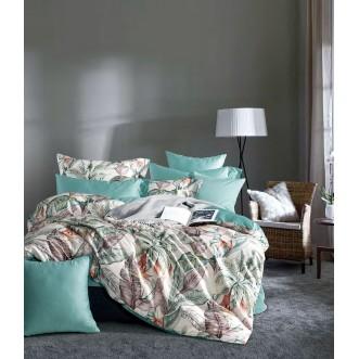 Купить постельное белье египетский хлопок TIS07-167 евро Tango