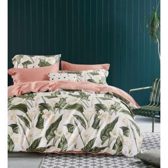 Купить постельное белье египетский хлопок TIS04-181 1.5 спальное Tango