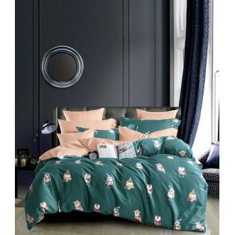 Купить постельное белье египетский хлопок TIS04-185 1.5 спальное Tango