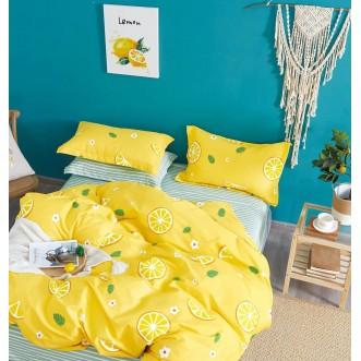 Купить постельное белье твил TPIG6-1140 евро Tango