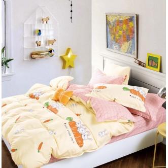 Купить постельное белье твил TPIG6-1135 евро Tango