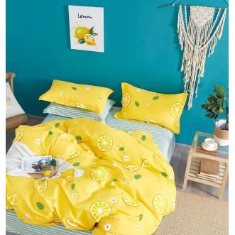 Купить постельное белье твил TPIG2-1140 2 спальное Tango