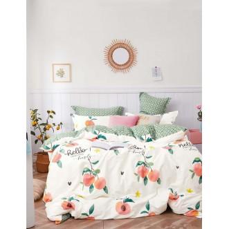 Купить постельное белье твил TPIG2-1114 2 спальное Tango